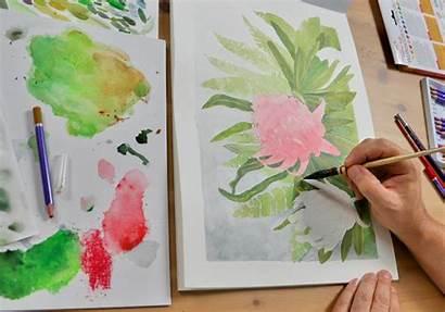 Pencil Watercolour Techniques Watercolor Pencils Draw Tehnici