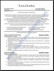 professional analyst resume sample real resume help With www professional resume com