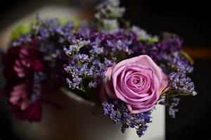 Trauer Blumen Bilder : blumen f r die trauer harold bestattungen ~ Frokenaadalensverden.com Haus und Dekorationen
