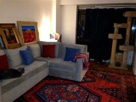 need rug ideas to go with my light grey sofa and blue curtains
