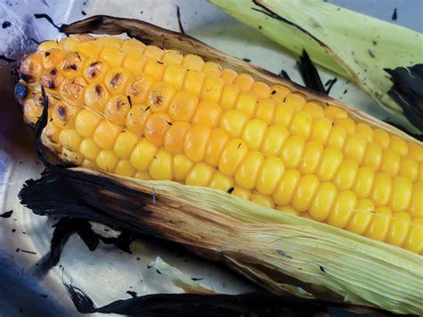 grilled corn in husk enjoying manitoba s sweet corn season manitoba co operator