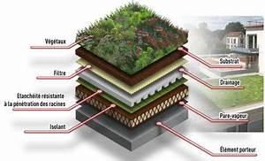 25 basta ideerna om les talus pa pinterest jardin With idee allee de maison 16 5 facons de mettre en scane les graminees detente jardin