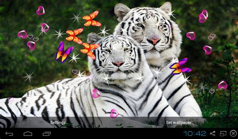 Free Bengal Tiger Live Wallpapers Apk Download For