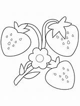 Truskawki Kolorowanki Pobrania Ausmalbilder Erdbeere Ausdrucken Drukuj Pobierz sketch template