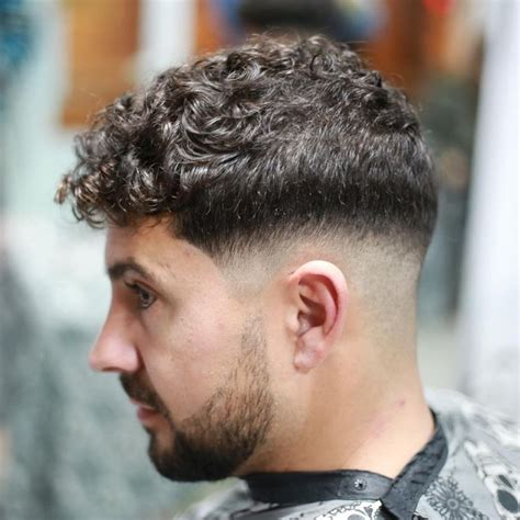 haircuts  men curly hair  curly hairstyles