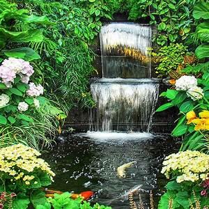 Plantes D Hiver Extérieur Balcon : ma jardini re de balcon choisir les plantes d 39 hiver et ~ Nature-et-papiers.com Idées de Décoration