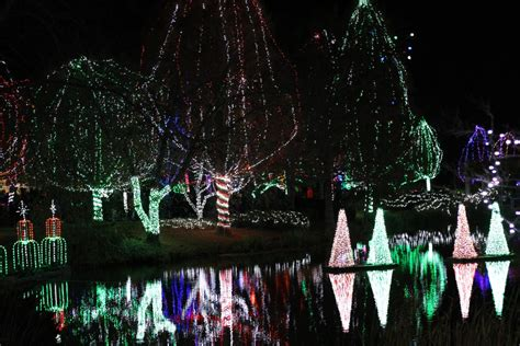 wildlights at the columbus zoo horizons