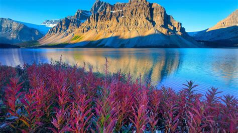 Lake Louise Canadas Banff National Park Alberta Beautiful
