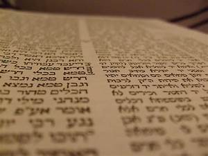 Sefaria Puts Talmud Into Public Domain  U2013 The Forward