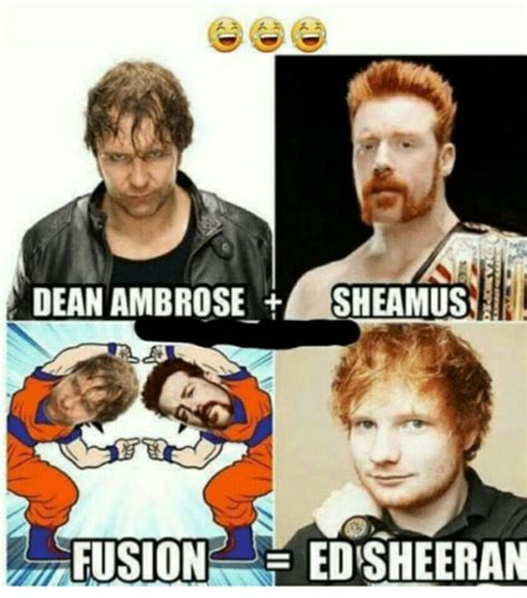 Dean Ambrose Memes - wwe memes wwe funny sheamus and dean ambrose