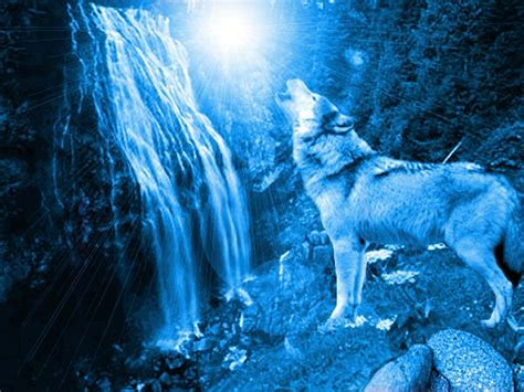 Blue And Purple Wolf Wallpaper by Blue Wolf By Khalla On Deviantart