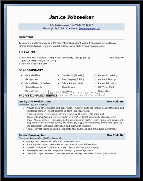 successful resume format 28 images exles of resumes