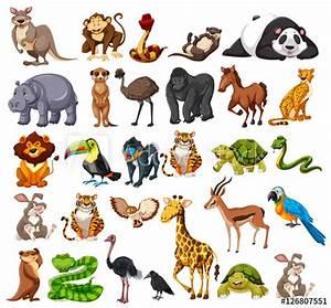 Animal En G : different types of wild animals on white buy this stock ~ Melissatoandfro.com Idées de Décoration
