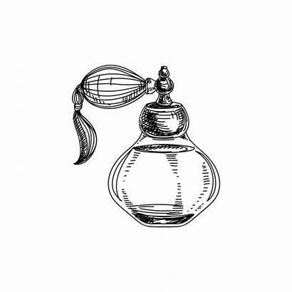 Perfume Bottle Vector Illustration Clip Drawn Hand