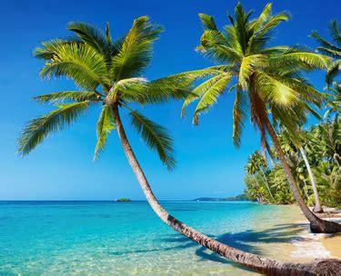 bureau ordinateur en coin les plus belles plages d ibiza