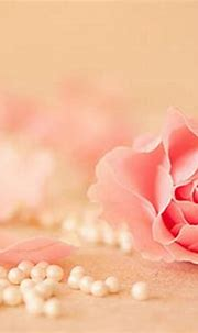 Rose and Pearls (2560x1440) Wallpaper, Image, Background ...