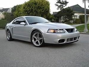 2004 Ford Mustang SVT Cobra - User Reviews - CarGurus