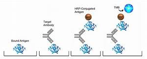 Mouse Anti-Hepa... Hepatitis B Surface Antibody