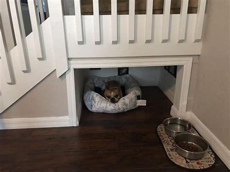 chambre de chien il construit une chambre sous les escaliers pour chien