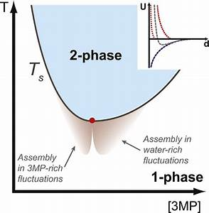 Schematic Phase Diagram Of The Binary Solvent  The Phase