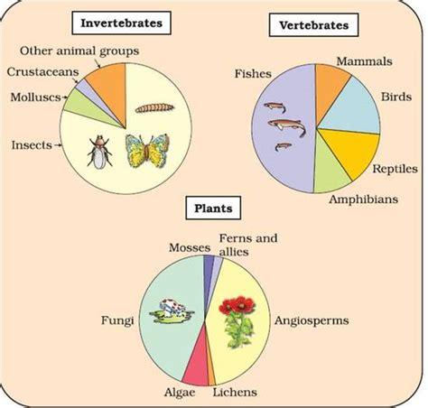 biodiversity today biologyisc
