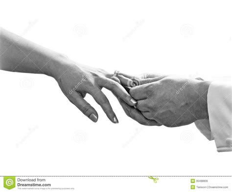 up of man putting a wedding ring the finger royalty free stock images