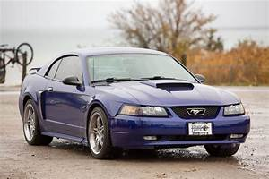 2003 Ford Mustang GT - Super-Charged! - LHD - Right Drive