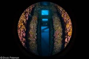 Underwater Photography With A Circular Fisheye Lens