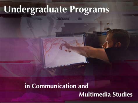 fau undergraduate programs