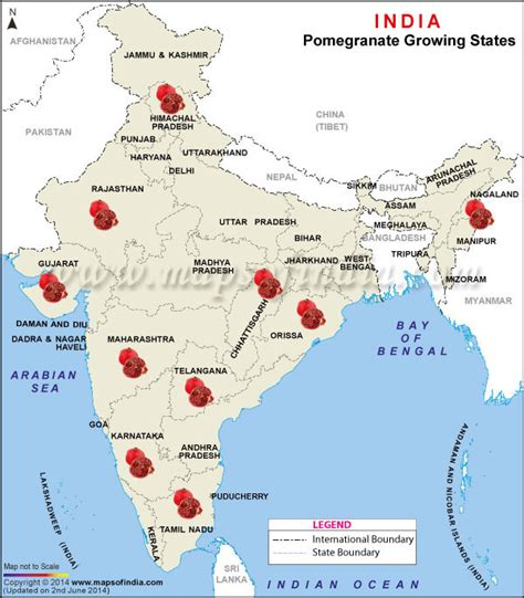 Map of Pomegranate Producing States in India, Pomegranate Producing States