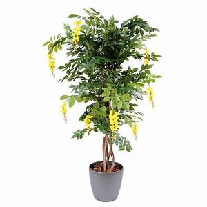 Arbre En Pot : glycine multi troncs jaune artificiel en pot rond ~ Premium-room.com Idées de Décoration