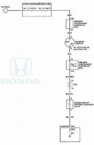 Honda Accord  Circuit Diagram