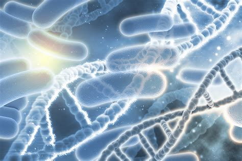 patients genes  hold  clue  reducing severe