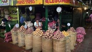 Kartoffeln Lagern Ohne Keller : alles rund um die kartoffel worlds of food kochen rezepte k chentipps di t gesunde ern hrung ~ Frokenaadalensverden.com Haus und Dekorationen