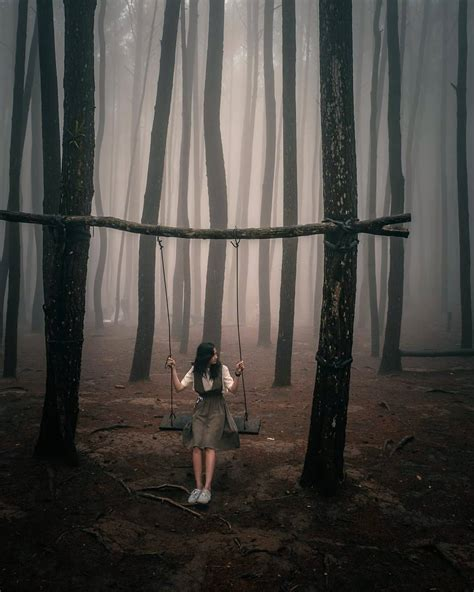 hutan pinus mangunan liburan sambil berfoto ria