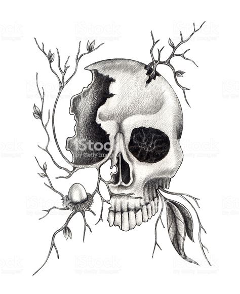 Skull Art Surreal Mix Nature Stock Vector More