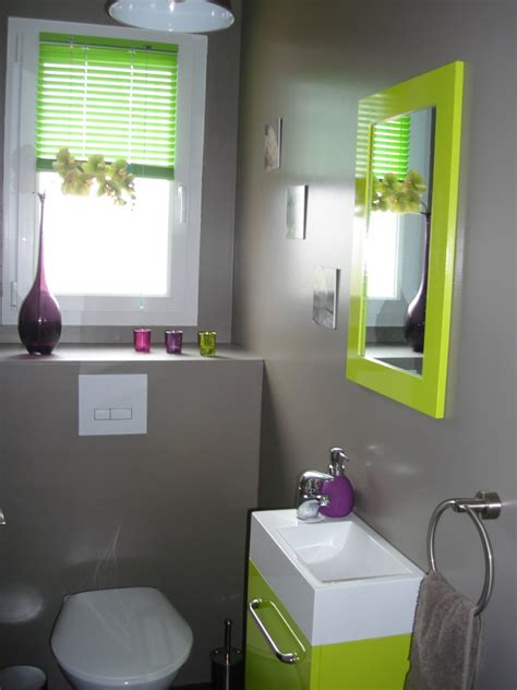 cuisine verte anis idée déco wc toilettes prune