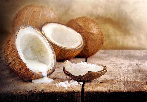 cuisiner avec du lait de coco noix de coco comment la cuisiner régal