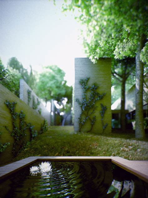 beautiful ivy overgrown house  hungary