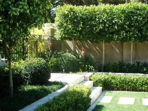 Landscape Design For Small Backyard - meer privacy in de tuin hebbes zimmo