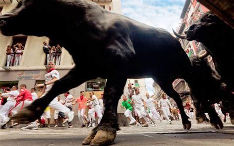 bitcoin   largest bull run  history  market
