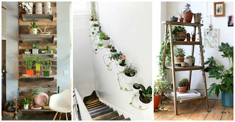 Your Home Decorate : 10 Unexpected Ways To Decorate Your Home With Plants