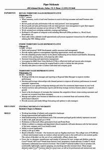 Senior Customer Service Job Description Territory Sales Representative Resume Samples Velvet Jobs