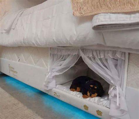 mattress   dog bed built   side