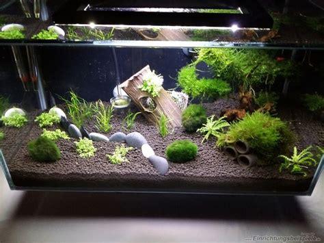 Die Besten 25+ Aquarium Einrichten Ideen Auf Pinterest