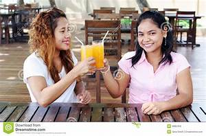 Friends Cheers Stock Photo - Image: 4982450