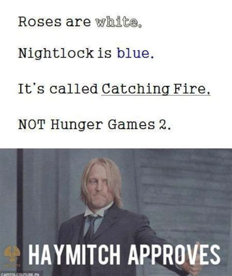 Catching Fire Meme - welcome to the hunger games 22 pics