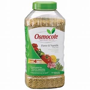 Shop Osmocote 3-lb Osmocote Flower and Vegetable Food