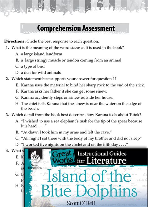 island   blue dolphins comprehension assessment