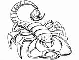Scorpion Coloring Pages Prehistoric Drawing Cartoon Scorpions Printable Tail Template Luxury Getdrawings Simple Goodnight Dinosaur Say Sketch Categories Paper Results sketch template